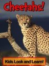 Cheetahs! Learn About Cheetahs and Enjoy Colorful Pictures - Look and Learn! (50+ Photos of Cheetahs) - Becky Wolff