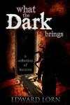 What the Dark Brings - Edward Lorn