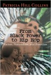 From Black Power to Hip Hop: Racism, Nationalism, and Feminism (Politics History & Social Chan) - Patricia Hill Collins