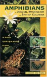 Amphibians: Of Oregon, Washington and British Columbia - Charlotte C. Corkran, Chris Thoms