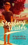 Stealing Water: A Secret Life In An African City - Tim Ecott