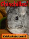 Chinchillas! Learn About Chinchillas and Enjoy Colorful Pictures - Look and Learn! (50+ Photos of Chinchillas) - Becky Wolff
