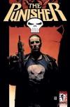 The Punisher, Vol. 4: Full Auto - Garth Ennis, Steve Dillon, Tom Mandrake