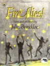 Fireflies - Julie Brinckloe