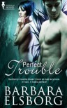 Perfect Trouble - Barbara Elsborg