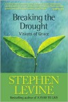 Breaking the Drought: Visions of Grace - Stephen Levine