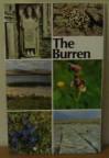 Burren: County Clare - Mary Angela Keane