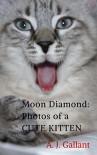 Moon Diamond: Photos of a cute kitten - A. J. Gallant
