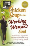 Chicken Soup for the Working Woman's Soul: Humorous and Inspirational Stories to Celebrate the Many Roles of Working Women - Jack Canfield, Mark Victor Hansen, Chrissy Donnelly