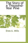 The Story of a Thousand-Year Pine - Enos Abijah Mills