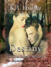 Destiny of the Female Warrior - K.A. Young