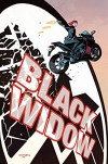 Black Widow Vol. 1: S.H.I.E.L.D.'s Most Wanted - Mark Waid, Chris Samnee