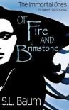 Of Fire and Brimstone: Elizabeth's Novella - S.L. Baum