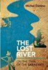 The Lost River: On The Trail of the Sarasvati - Michel Danino