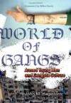 A World of Gangs: Armed Young Men and Gangsta Culture - John M. Hagedorn, Mike Davis