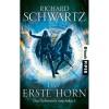 Das erste Horn (Das Geheimnis von Askir, #1) - Richard Schwartz