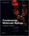 Fundamental Molecular Biology - Lizabeth A. Allison