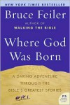 Where God Was Born: A Daring Adventure Through the Bible's Greatest Stories - Bruce Feiler
