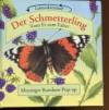 Der Schmetterling. Vom Ei zum Falter - David Hawcock