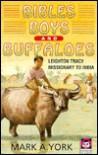 Bibles, Boys, and Buffalos - Mark A. York