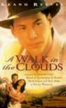 A Walk In The Clouds: A Novel - Deborah Chiel