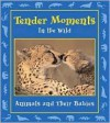 Tender Moments in the Wild: Animals and Their Babies - Stephanie Maze