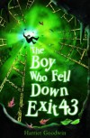 The Boy Who Fell Down Exit 43 - Harriet Goodwin