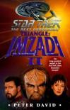 Triangle: Imzadi II: Star Trek The Next Generation - Peter David
