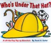 Who's Under That Hat? - Sarah Weeks, David A. Carter