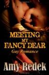 Meeting My Fancy Dear - Amy Redek
