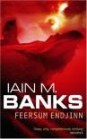 Feersum Endjinn - Iain M. Banks