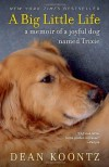 A Big Little Life: A Memoir of a Joyful Dog Named Trixie - Dean Koontz