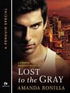 Lost to the Gray (Shaede Assassin, #2.5) - Amanda Bonilla