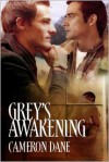 Grey's Awakening - Cameron Dane