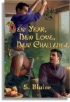 New Year, New Love, New Challenge - S. Blaise