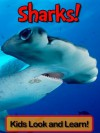 Sharks! Learn About Sharks and Enjoy Colorful Pictures - Look and Learn! (50+ Photos of Sharks) - Becky Wolff