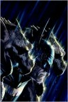 Batman: The Black Casebook - Bill Finger, France Herron, Edmond Hamilton, Lew Sayre Schwartz, Sheldon Moldoff, Dick Sprang, Grant Morrison