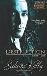 Destruction (Asylum for the Mechanically Insane) (Volume 2) - Sahara Kelly