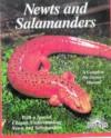Newts and Salamanders Newts and Salamanders - Frank Indiviglio