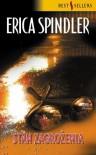 Stan zagrożenia - Erica Spindler