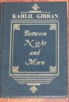 Between night and morn: A special selection - Kahlil Gibran, Anthony Rizcallah Ferris, Martin L. Wolf