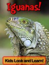 Iguanas! Learn About Iguanas and Enjoy Colorful Pictures - Look and Learn! (50+ Photos of Iguanas) - Becky Wolff