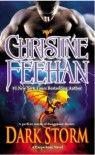 Dark Storm - Christine Feehan