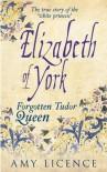 Elizabeth of York - Amy Licence