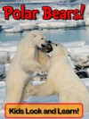 Polar Bears! Learn About Polar Bears and Enjoy Colorful Pictures - Look and Learn! (50+ Photos of Polar Bears) - Becky Wolff