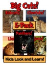 Big Cats! Learn About Big Cats and Enjoy Colorful Pictures - Look and Learn! (50+ Photos of Big Cats) - Becky Wolff