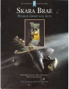 Skara Brae: Northern Europe's Best Preserved Neolithic Village - D.V. Clarke