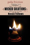 Wicked Solutions - Havan Fellows