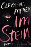 Im Stein - Clemens Meyer