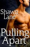 Pulling Apart - Shawn Lane